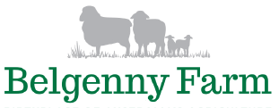 Belgenny Logo